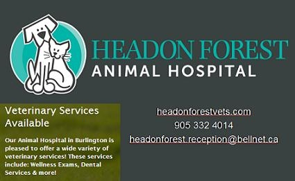 headonforestvets.com