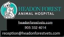 https://headonforestvets.com/